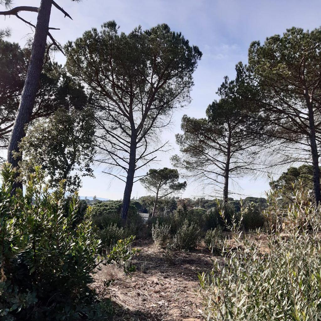Associació de Propietaris de la Urbanització Residencial Park Maçanet de la Selva
