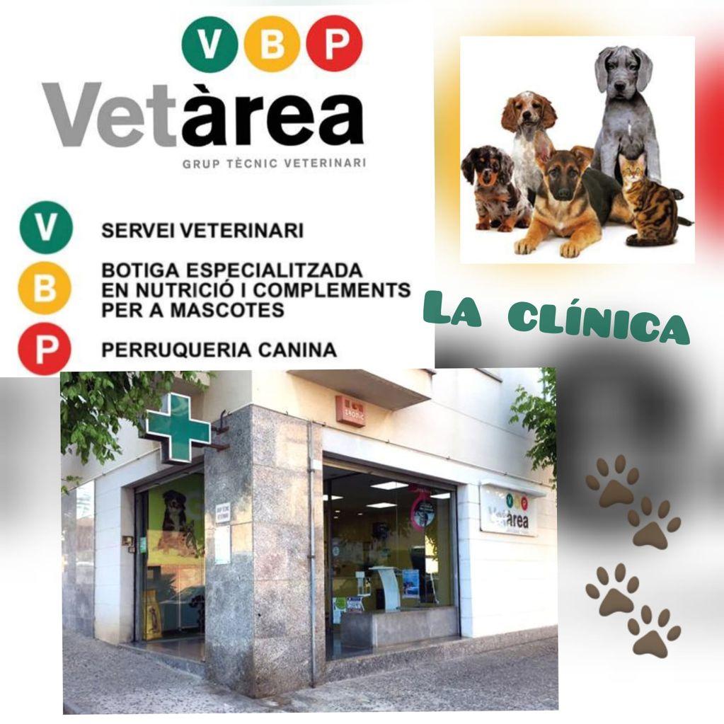 Vetàrea - Clínica veterinaria