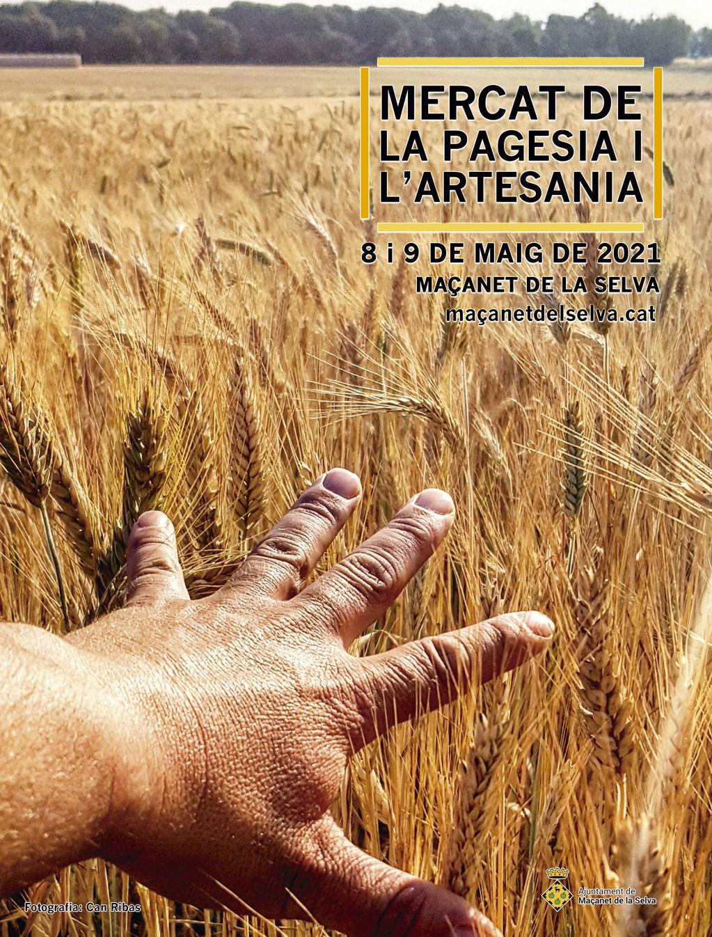 Mercat de la pagesia i l'artesania - 74673-mercat_pages_web.jpg