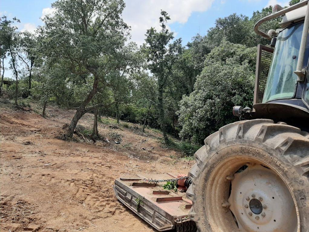 Comencen les tasques de neteja i manteniment de les zones verdes i franges perimetrals del municipi  - 751bc-franges.jpeg