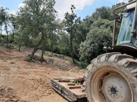 Comencen les tasques de neteja i manteniment de les zones verdes i franges perimetrals del municipi