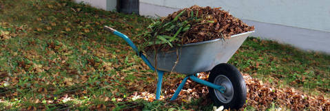 Recollida porta a porta de restes vegetals i poda