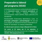 L'Ajuntament, a través de la Fundació Hada i el Punt d'Informació Laboral, impulsa els programes SIOAS i MAIS - 20158-2.png