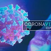 Consulta aquí tota la informació sobre la covid-19