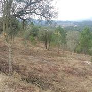 Comencen les tasques de neteja i manteniment de les zones verdes i franges perimetrals del municipi  - d57a5-franges2.jpeg